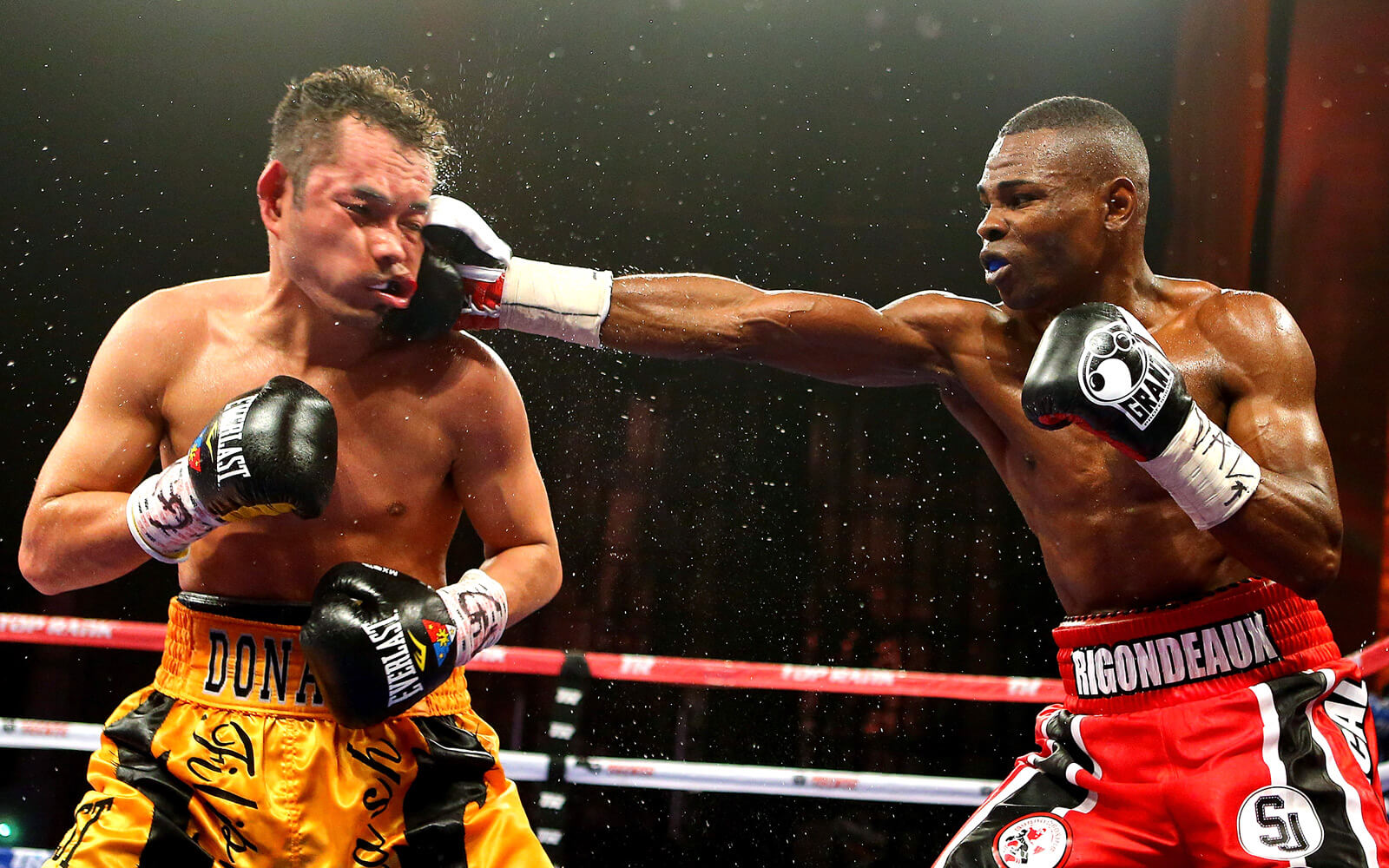 Rigo p4p article.jpg